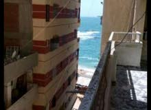 apartment for rent in Alexandria Abu Qir