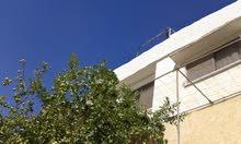 شقة مع السطح  للبيع  نقدا او اقساط