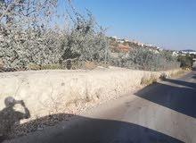 ارض للبيع في عجلون  عبين بقرب محطة المناصير المقاطع