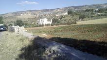 ارض للبيع في الاردن الصبيحي قرية بيوضة الجديدة