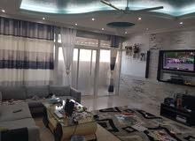 شهري شقة مفروشة راقية جدا في عجمان على البحر مع باركن شامل الماء والكهرباء
