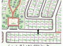 ارض للبيع بالقنفذه موقع مميز
