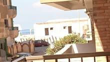 امتلك شقة سوبرلوكس بالنخيل خطوات من الشاطئ , الاسواق , موقع متميز بجوار نادى وحمام سباحة دانا بلازا