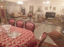 شقة للبيع مدينة نصر 300م بارقي موقع المربع الذهبي شارع ابو داوود الظاهري