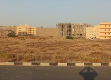 ارض تجارية للبيع - منطقة الجرف الصناعية 3 بامارة عجمان - KBH 01