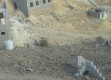 المكلا-جول الشفاء بجانب مسجد التوفيق