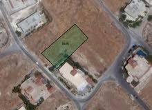 قطعه سكن ا السرو-خلف جامعه عمان الاهليه