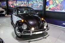Beetle 1979