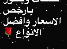 خلطات وبخور بافضل الاسعار اجود الانواع
