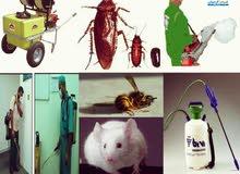 شركة مكافحة حشرات بجدة مع الضمان
