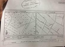 عمان - البنيات