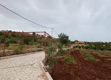 مزرعة للبيع مع بيت مصيف في عجلون