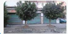 مدينة السلام اسكندرية