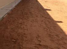 تعشيب مزارع تنسيق حدائق تنضيف حوالي البيوت 079661256