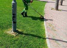 nettoyage et jardinage