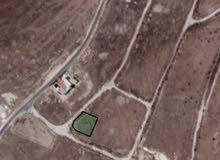 700 متر اراضي شمال عمان ام الدنانير القصير على شارعين بسعر مناسب