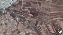 ارض تجارية للبيع بواجة 50متر جسر النعيمة اربد
