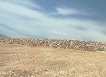 3600 متر العنيبه خلف جامعة مسنسله وجاهزه للبناء