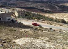 ارض سكنية مرتفعة مطلة على لواء بني كنانة ومنطقة الجولان وفلسطين