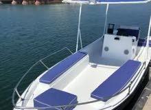 تصنيع قوارب سياحية حسب الطلب باسعار مناسبة