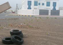 New Duplex villa for  rent (Managers cader )