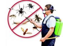البيت الحديث للتنظيفات ومكافحة الحشرات بالضمان