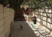 بيت للبيع في أبو نصير طابقين