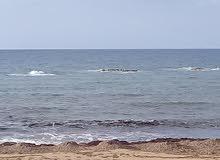 ارض 425متر تطل علي حرم البحر مباشرة بواجهه 18.5 متر
