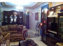 شقة للايجارقانون جديد بفيصل العشرين منطقه الملكه 125م هاي لوكس