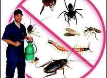 شركه خميس مشيط لمكافحة الحشرات و عزل الأسطح وتنظيف الخزانات