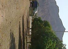 للبيع مزرعه للبيع بضدنا الفجيره مساحه الارض 17814 متر مربع