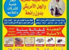مبيدات  حشريه مرخصة صحيا