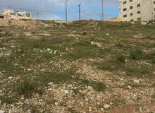 ارض في منطقة ياجوز الكوم تصلح إسكان مميز