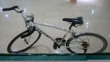 دراجة سباقات