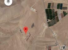 للبيع ارض 10.6 دونم في ارينبه الغربيه