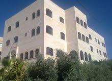 apartment for rent in AmmanSafut