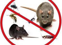 مهندس زراعي متخصص في مكافحة الحشرات والقوارض داخل المنازل والمحلات