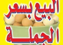 بيض نباتي