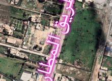 قطعة أرض 1,000 متر للإيجار على طريق المطار الرئيسي