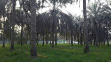 فلل ومنازل وشقق وعمارات للبيع والايجار في امكان متفرقة في البحرين
