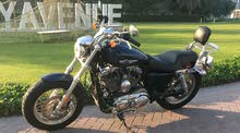 HARLEY DAVIDSON XL1200C For Sale