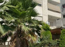 Second Floor  apartment for sale with 3 rooms - Amman city Al Jandaweel