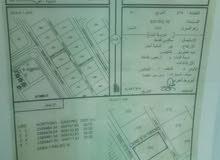 أرض سكنية للبيع في سمائل حي الواحة 1 زاوية تبعد عن برج الصحوة نصف ساعة فقط