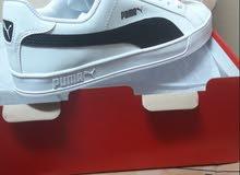 حذاء بوما جديد من كوريا   مع كرتونه الاصلي مقاس 40-43