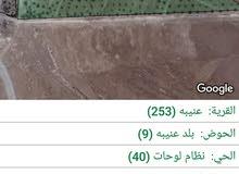 مزرعه 10مع بيت  في جرش عنيبه