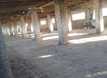 مزرعة دواجن للايجار جاهزه وكامله