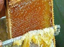عسل طبيعي 100في 100