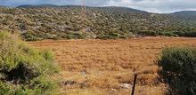 قطعة ارض للبيع 5000 م