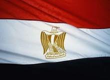 تأسيس الشركات التجارية وإصدار تراخيص الاستثوفتح الفروع للشركات الأجنبية في مصر