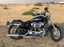 Harley Davidson Sportster XL1200C for Sale